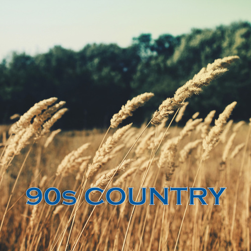 90s Country von Various Artists