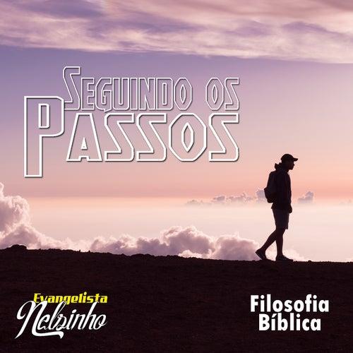 Seguindo os Passos de Evangelista Nelsinho
