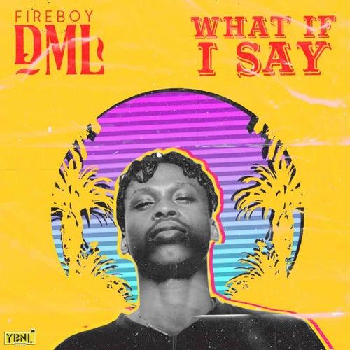 What If I Say de Fireboy DML