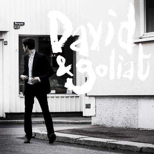 David & Goliat by David