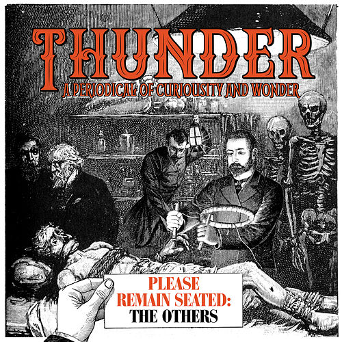 Please Remain Seated - The Others by Thunder