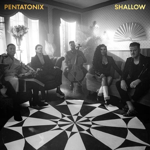 Shallow by Pentatonix