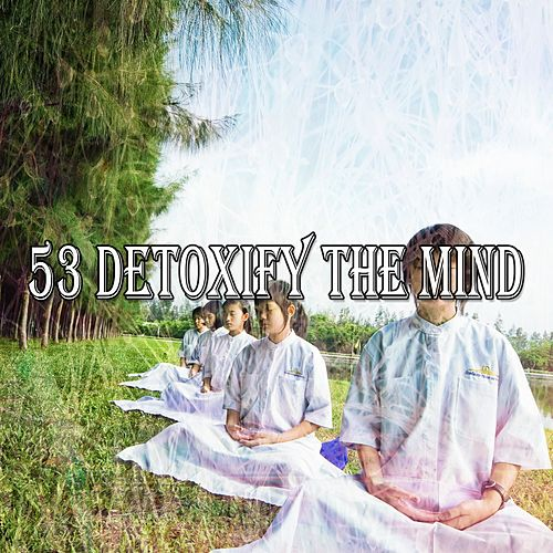 53 Detoxify the Mind by Relaxing Mindfulness Meditation Relaxation Maestro