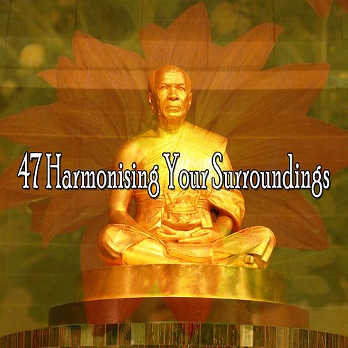 47 Harmonising Your Surroundings de Zen Meditate