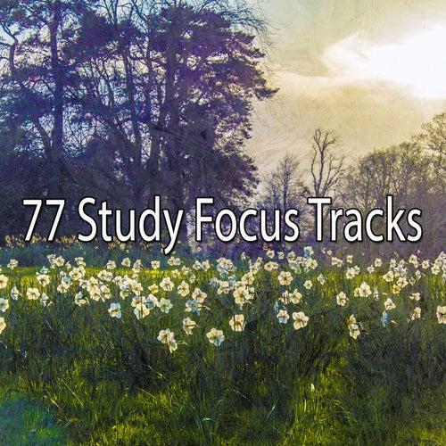 77 Study Focus Tracks von Entspannungsmusik