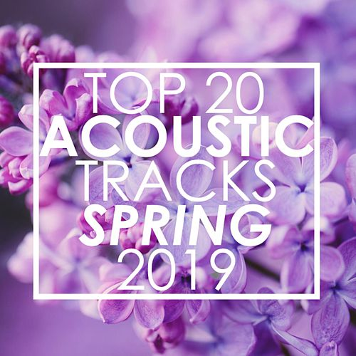 Top 20 Acoustic Tracks Spring 2019 de Guitar Tribute Players