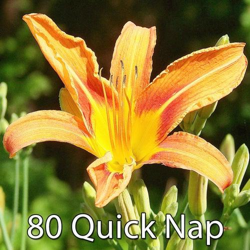80 Quick Nap von Best Relaxing SPA Music