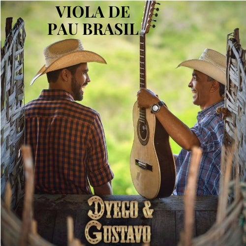Viola de Pau Brasil by Dyego e Gustavo