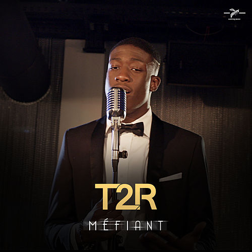 Méfiant by T2r