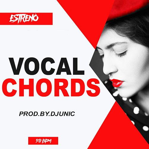 Vocal Chords de DJ Unic