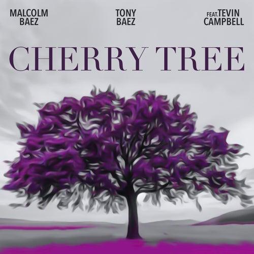 Cherry Tree de Malcom Baez