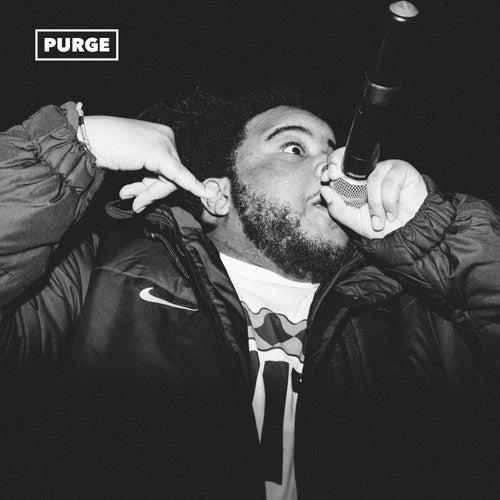 Purge by Nolan the Ninja