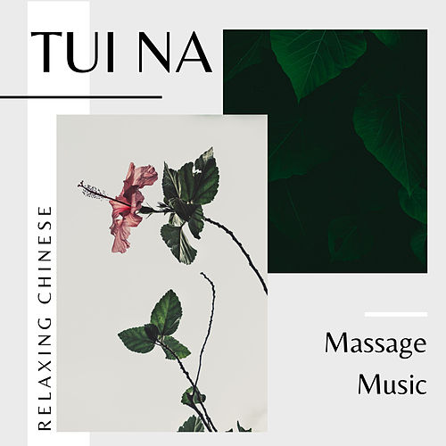 Tui Na - Relaxing Chinese Massage Music de Massage Tribe