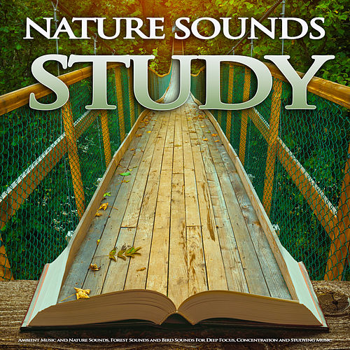 Studying Music: Binaural Beats Sounds For Studying,    by