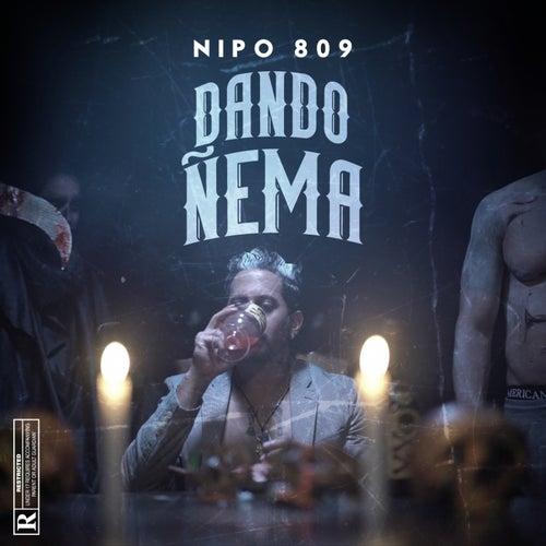 Dando Ñema de NIPO 809