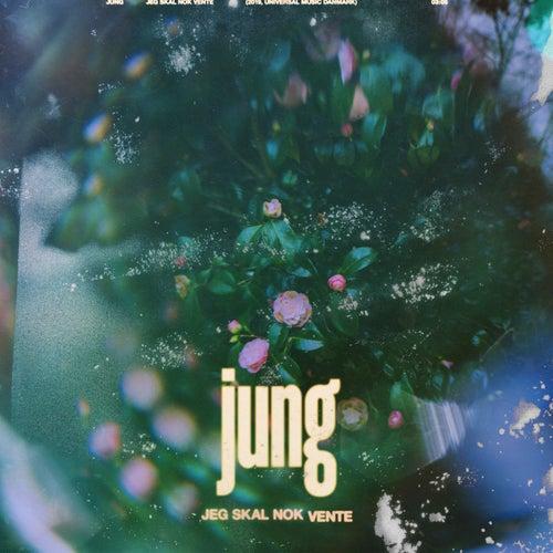 Jeg Skal Nok Vente di Jung