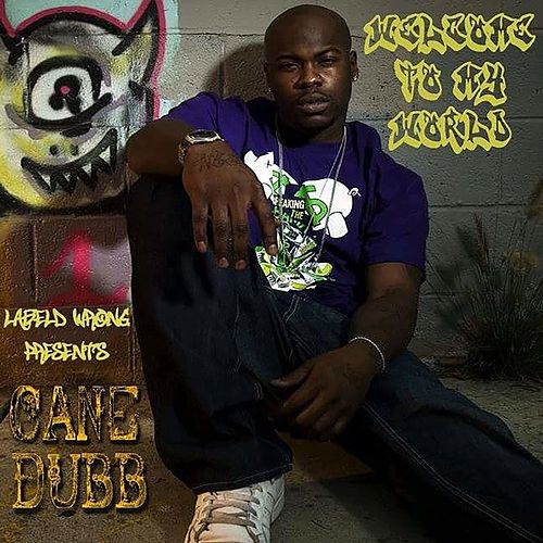 Welcome to My World by Cane Dubb