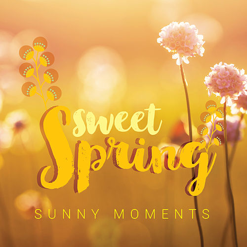 Sweet Spring: Sunny Moments von Various Artists