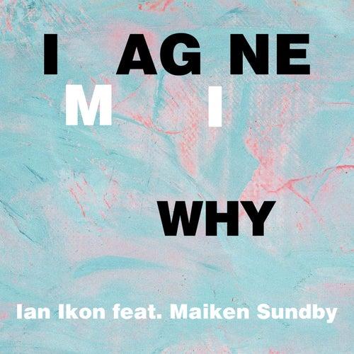 Imagine Why by Ian Ikon