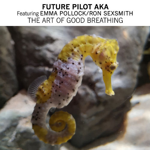 The Art Of Good Breathing by Future Pilot AKA