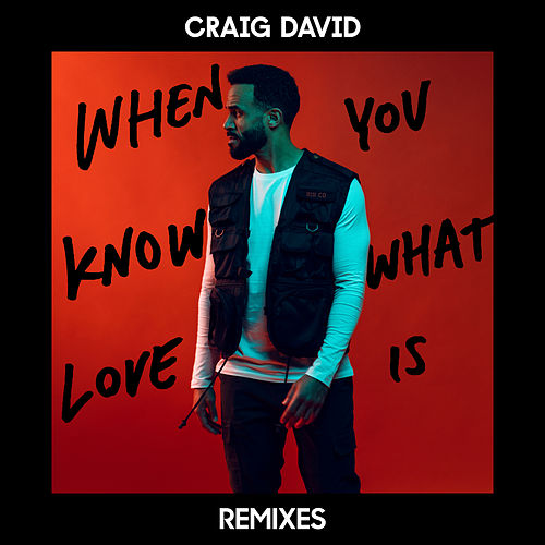 When You Know What Love Is (Remixes) by Craig David