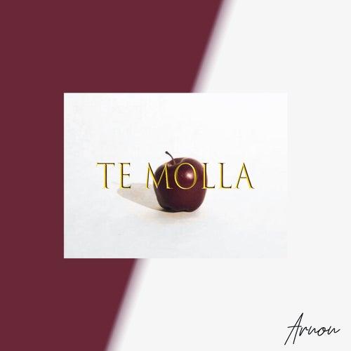 Te Molla (feat. Killua) by Arnon
