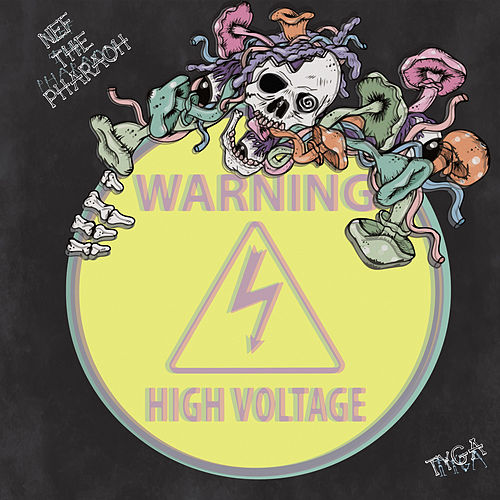 High Voltage (feat. Tyga) de Nef the Pharaoh