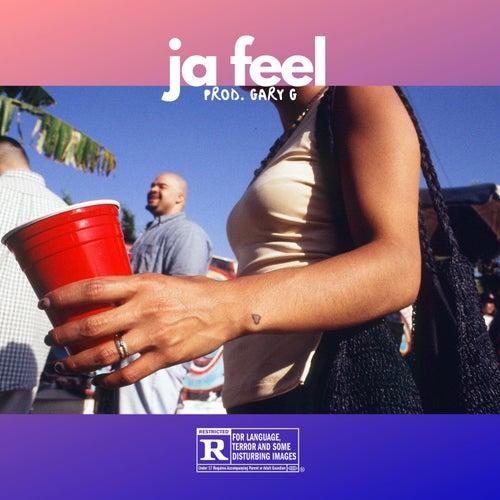 Ja Feel de Reggie Kilo