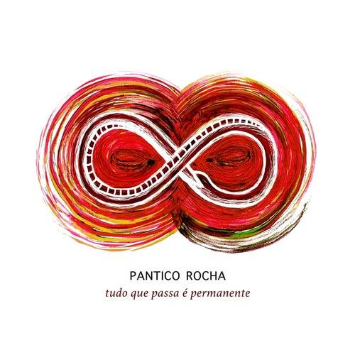 Tudo que passa é permanente by Pantico Rocha