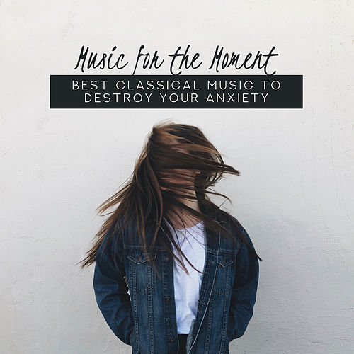 Music for the Moment: Best Classical Music to Destroy Your Anxiety de Various Artists