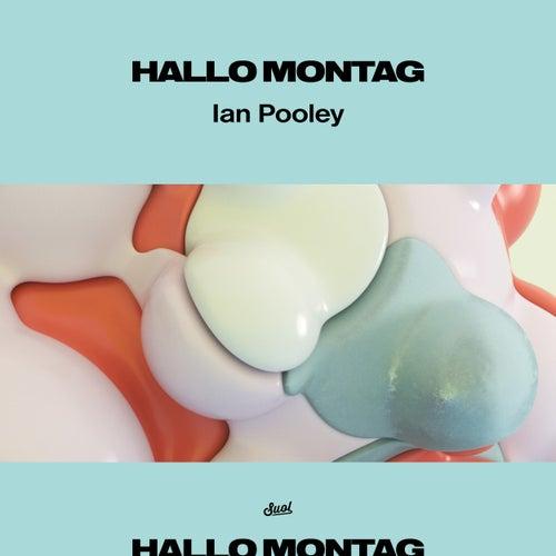 Puzzled von Ian Pooley