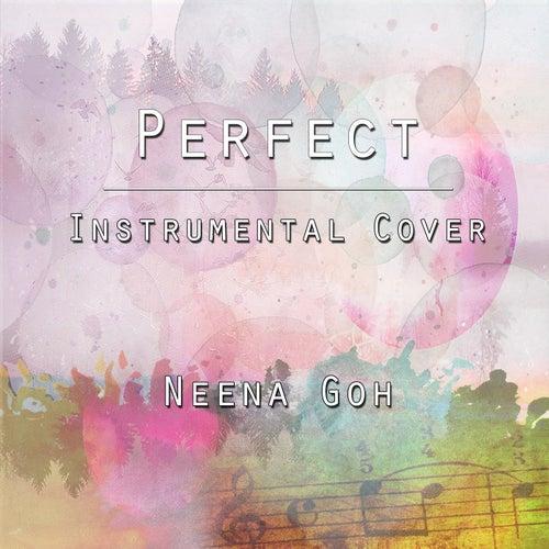 Perfect (Instrumental Cover) von Neena Goh