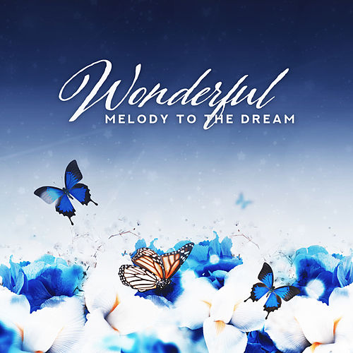 Wonderful Melody to the Dream von Various Artists