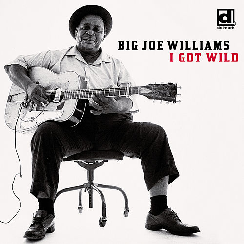 I Got Wild by Big Joe Williams