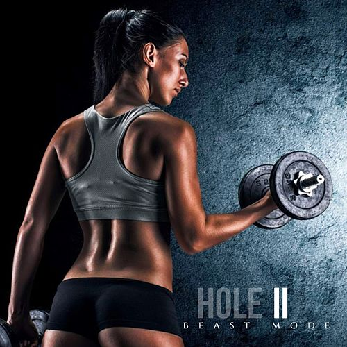 Beast Mode, Vol. 2 von Hole