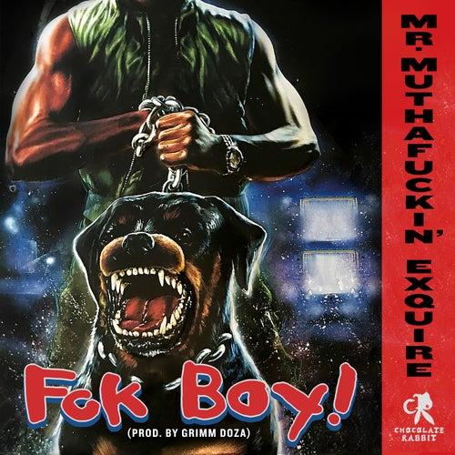 Fck Boy! by Mr. muthaf*ckin' eXquire