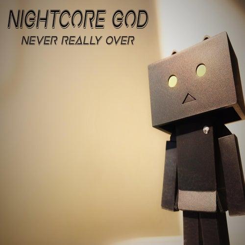 Never Really Over de Nightcore God