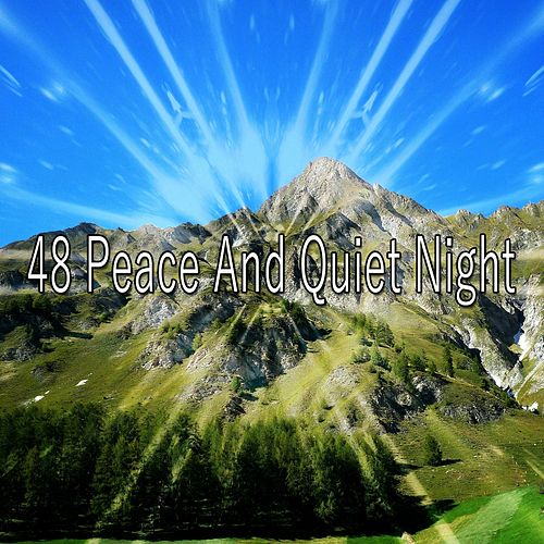 48 Peace and Quiet Night de Best Relaxing SPA Music