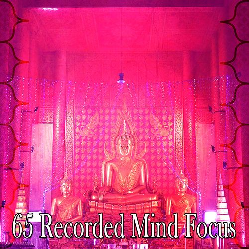 65 Recorded Mind Focus von Yoga Music