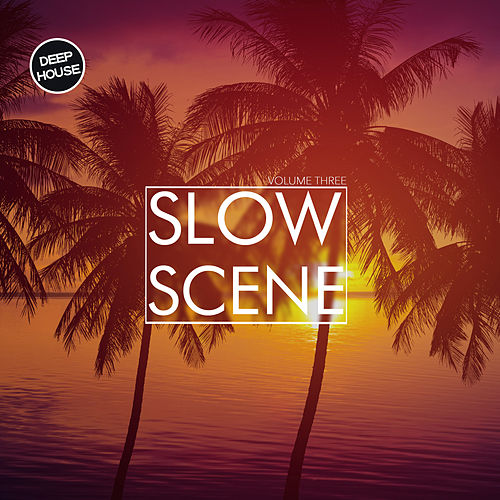 Slow Scene, Vol. 3 de Various Artists