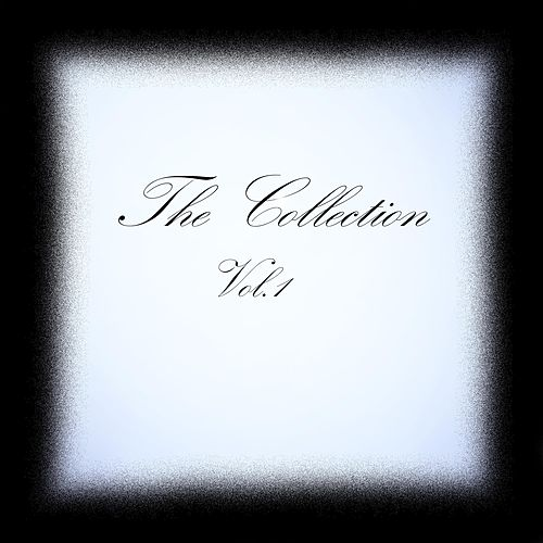 The Collection, Vol. 1 von Andy C