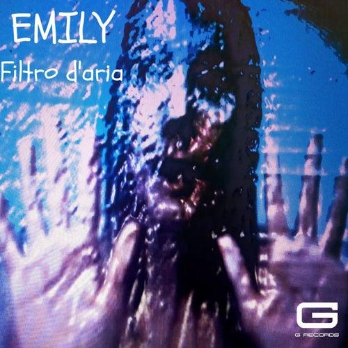 Filtro d'aria de Emily