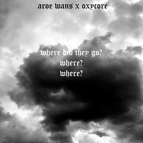 Where Did They Go? by Oxycore