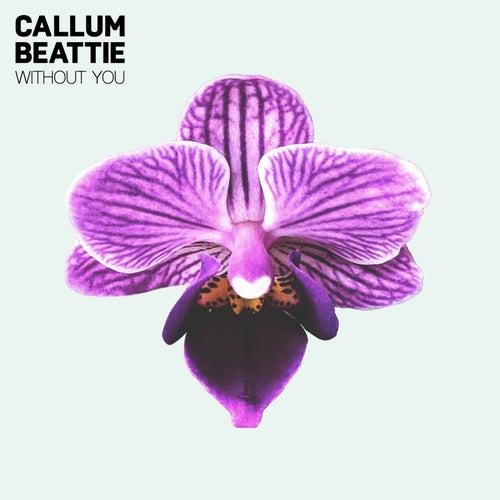Without You de Callum Beattie