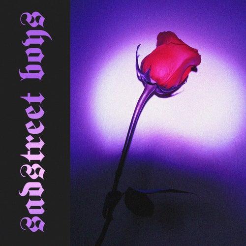 Sadstreet Boys by Coleman Hell