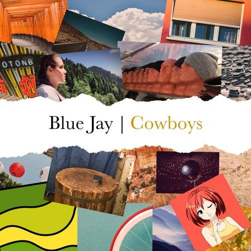 Ковбои de Blue Jay