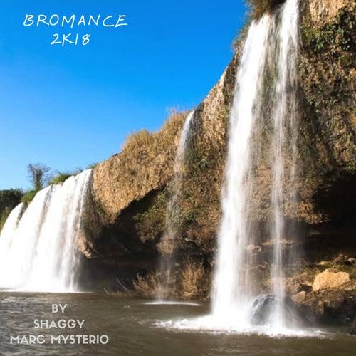 Bromance (2k18 Remix) van Shaggy
