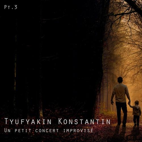 Un petit concert improvisé Pt.3 by Tyufyakin Konstantin