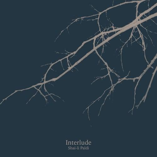Interlude by Shai-li Paldi