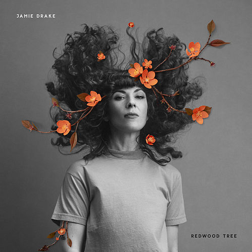 Redwood Tree de Jamie Drake